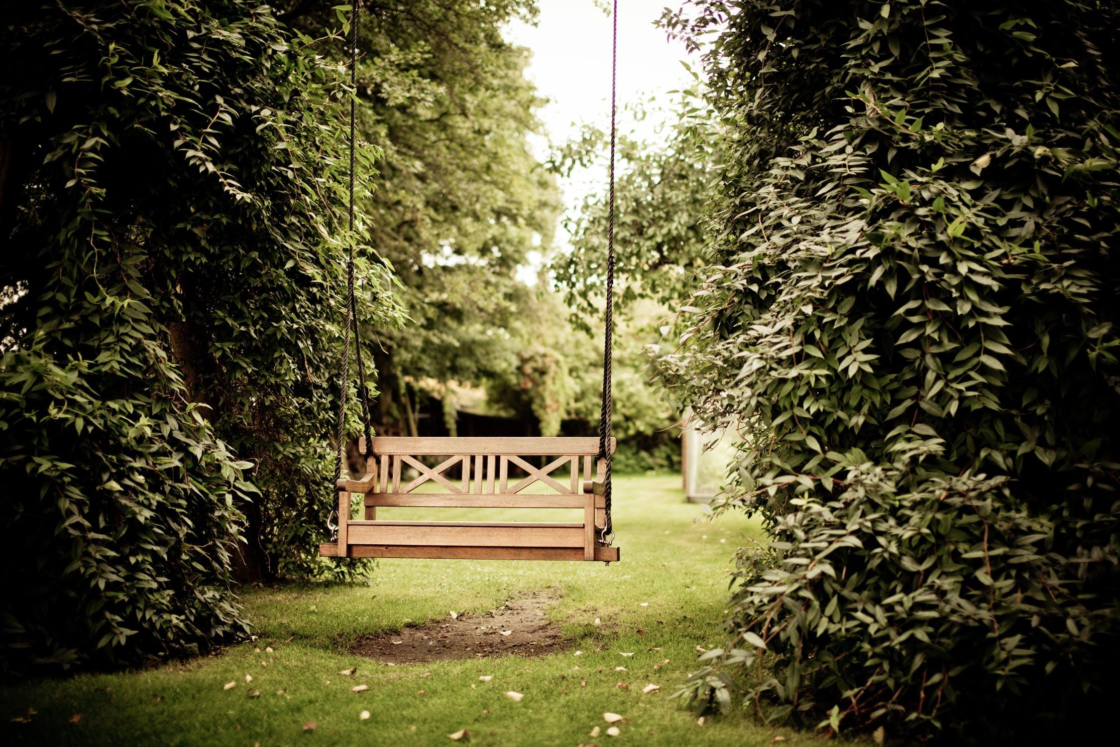 Have med bænk